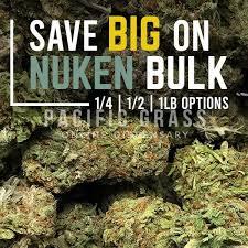 Buy Nuken in Bulk Online In Canada - Pacific Grass