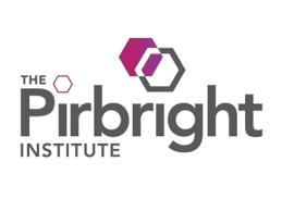 Image result for pirbright