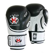 leather evo boxing gloves temple