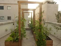 rooftop vegetable garden design ideas