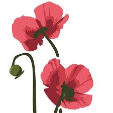 Beautiful Red Poppy Decal For Your Car Or Truck Or Whatever Etsy