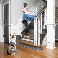 Pet Deterrent Sprays Barriers Mats Petsafe Pet Proofing Products Petsafe