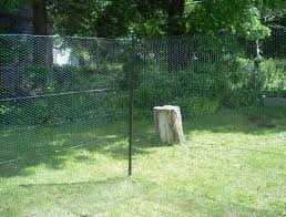 Deer Fence 4b2 Options What S The Best Kind Of Fencing