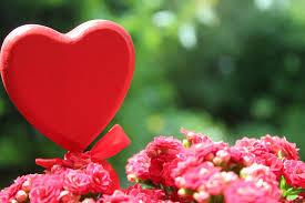 صور حب أجمل صور الحب والعشق والغرام الرومانسية روزبيديا