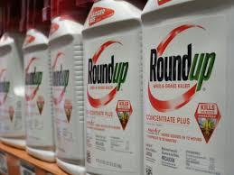 glyphosate le roundup cancérigène ou