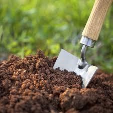 10 best gardening tools every