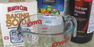 removing cat urine odor with homemade