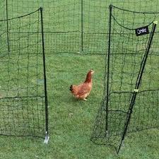 Flexible Chicken Fencing With Gate Harrod Horticultural Chicken Fence Free Range Chickens Chicken Enclosure