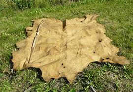tanning alaska big game skins at