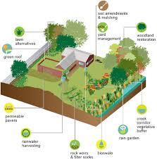 rainscaping guide rainwater harvesting