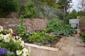 grow a winter vegetable garden