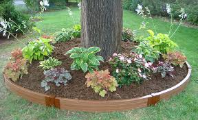 best landscape edging for your yard