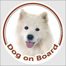 Sticker Circle Sticker Dog On Board 15 Cm Samoyed Head