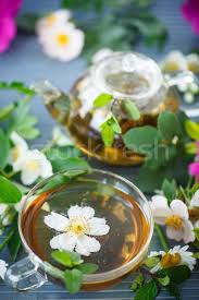 herbal tea stock photo natalia