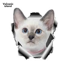 13cm X 11 7cm 3d White Cat Vinyl Sticker Torn Metal Decal Animal Car Stickers Window Bumper Decor Pet Cat Car Styling Buy At The Price Of 1 57 In Aliexpress Com Imall Com