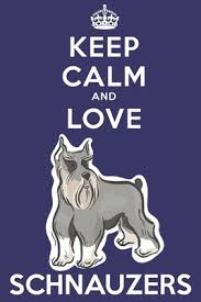 keep calm and love schnauzers funny