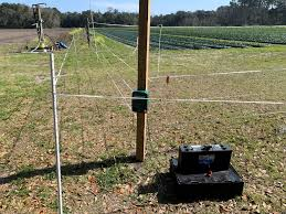 Deer Management For Home Gardeners Using A Two Tiered Fence System Home Garden Information Center