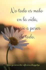 FRASES Y PENSAMIENTOS mensajes con flores  Oracion de buenos dias  Frases Pensamientos