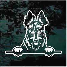 Scottie Peeking Car Window Decals Stickers Decal Junky
