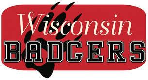 35 wisconsin badger wallpaper screensavers