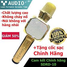 Loa Karaoke Fpt - Mic Karaoke Bluetooth Sdrd Sd10 Âm Thanh Cực Hay, Mic Bắt  Giọng, Cực Phẩm Hát Karaoke, Chống Hú- Bảo Hành 12 Tháng