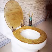 glitter oval soft close resin toilet seat