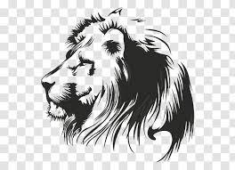 Lionhead Rabbit Tiger Wall Decal Cat Printing Leon Transparent Png