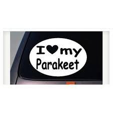 I Love My Parakeet Parrot Sticker Bird Macaw Truck Window Sticker Decal 6 C835 Walmart Com