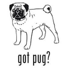 Got Pug Toy Dog Decal Vinyl Sticker