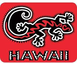 Amazon Com Zero Gravity Hawaii Hawaiian Gecko Car Window Decal Bumper Sticker Automotive
