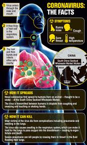 What is coronavirus, how does Covid-19 ...
