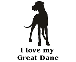 Great Dane Car Decal Need This Click Here To Find Out More Http Googydog Com Great Dane Dane Mans Best Friend