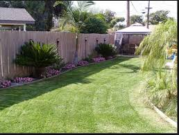 Back Fence With Sago Palms And Nice Flowers Tropical Backyard Tropical Backyard Landscaping Front Yard Landscaping Pictures