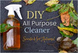 a clove and orange all purpose cleaner