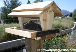 bird feeder plans for all types of feeders
