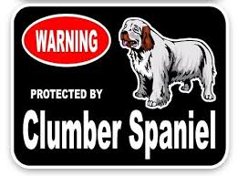 clumber spaniel car sticker dog gifts nz
