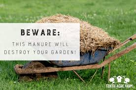 this manure will destroy your garden