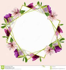 Postales Con Las Flores De La Magnolia Para Su Diseno De