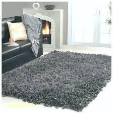 black fuzzy rug savethefrogs2 com