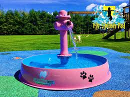 dog bowl with hydrant water play