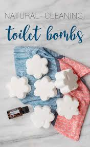 diy toilet cleaning s for a healthy