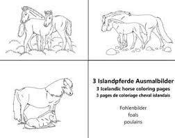 Paard Pony Tekening Etsy