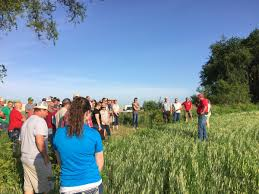 """Practical Farmers on Twitter: """"The things you can do with barley - graze,  brew, feed. Aaron Saeugling talks management practices #smallgrains… """""""