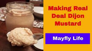 making homemade real deal dijon mustard