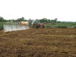 El Programa CAR tiene un contenido de ¢4.000 millones y contará con el apoyo del SBD en fortalecimiento de las capacidades empresariales de los productores rurales.