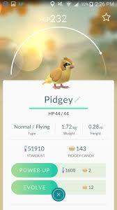 Pidgey