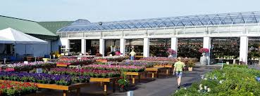 garden centers commercial greenhouse