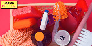 mold and mildew removal tips how to
