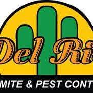 Get Del Rio Termite  PNG