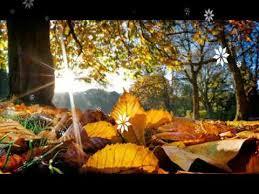 autumn wallpapers autumn wallpapers hd